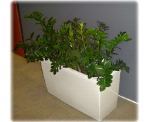 Servis rostlin v interiérech
